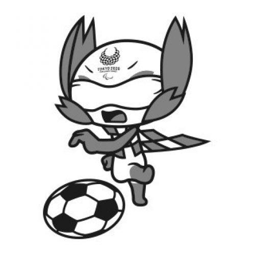 כדורגל עיוורים-שחורלבן
